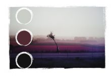 fotografia – skrypty kolorystyczne